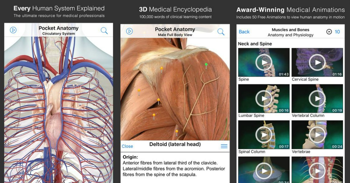 iTunes: FREE Pocket Anatomy App! ($15 Value)